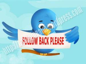 Follow Back Plese